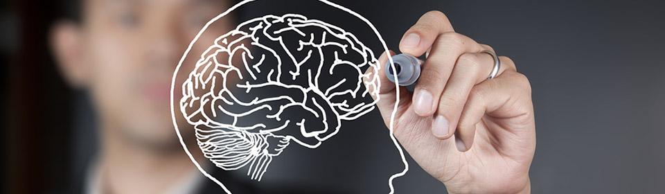 Como o neuromarketing está desvendando o cérebro dos consumidores para gerar mais vendas